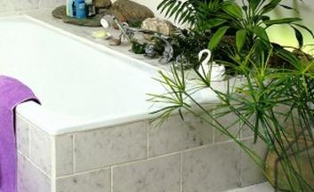 Ambiente il bagno - Piante da bagno ...